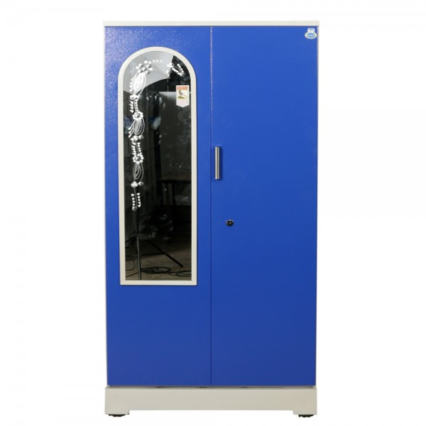 "Akshaya 2 Door Steel Wardrobe 42""  Blue with Mirror"